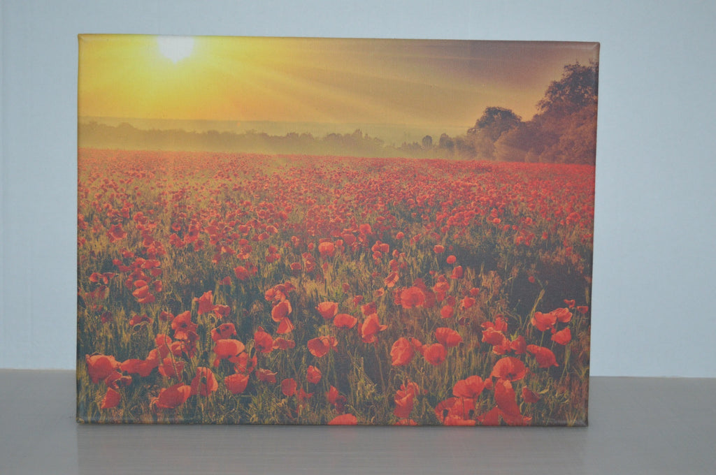 Stretched canvas - Sunset over poppy field