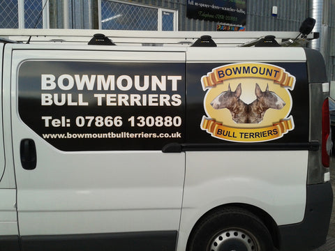 Bowmount Bull Terriers - Panel print/wrap
