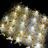 40 LED Starfish String Light with Remote Controller