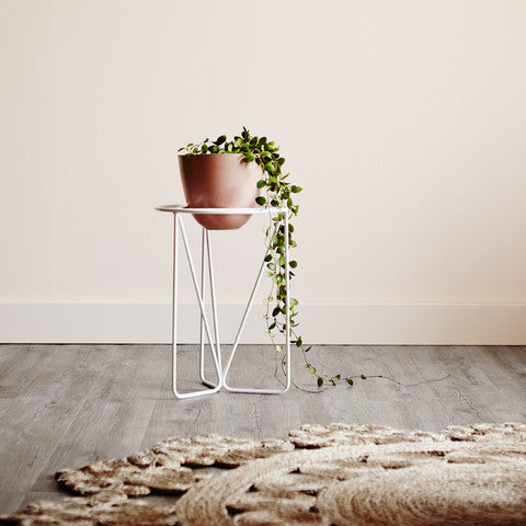 Nightshade Chrysalis Plant Stand *Premium Collection*
