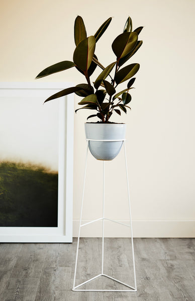 Nightshade Arrow Plant Stand *Premium Collection*