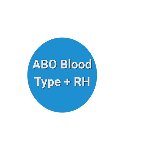 ABO Blood Type Test and RH Type