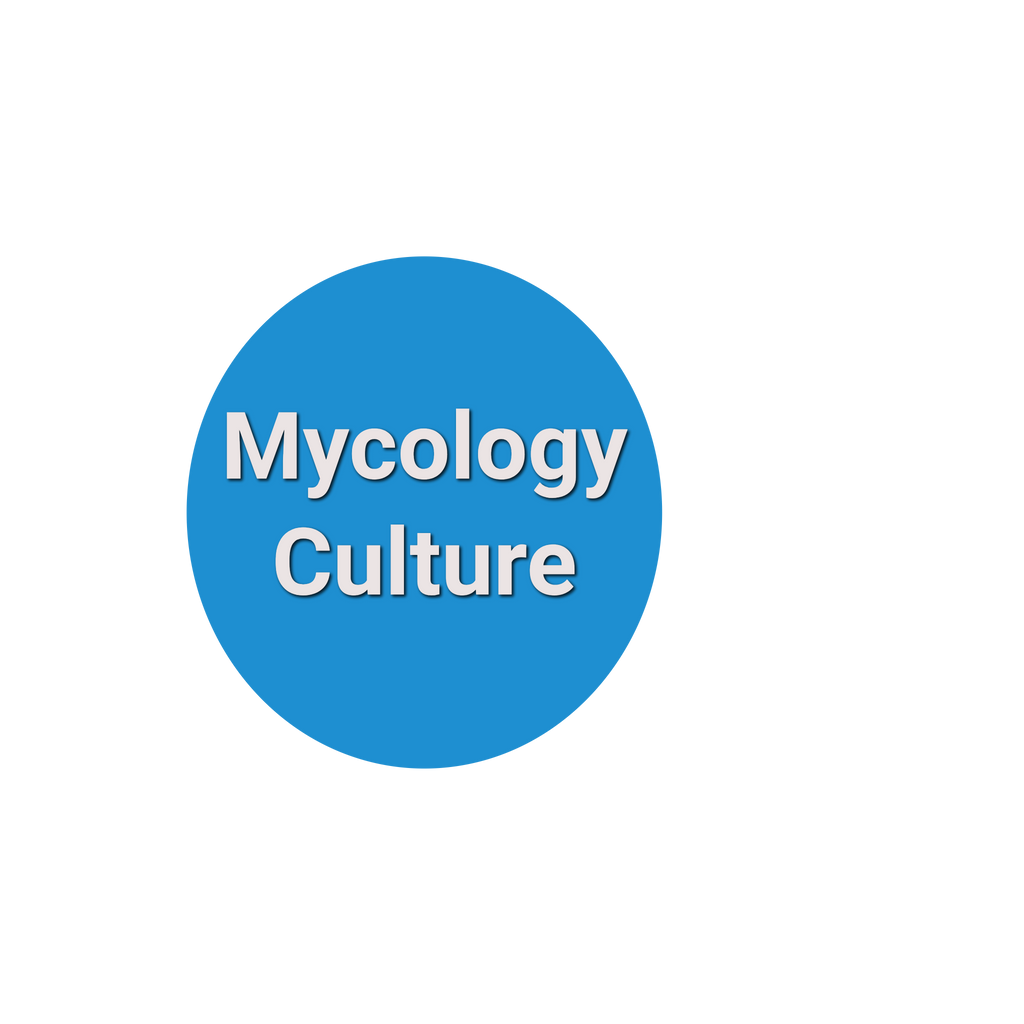 Fungus (Mycology) Culture