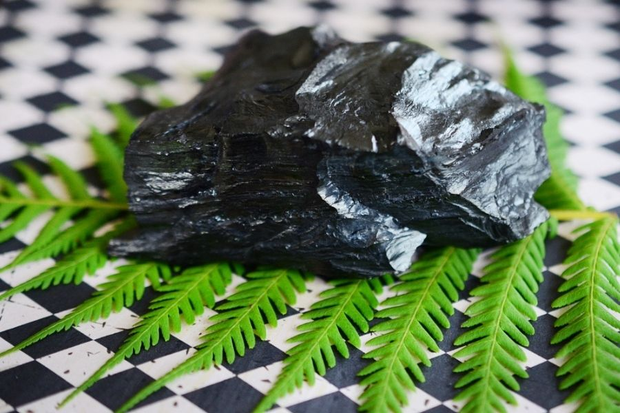 Black jet atop a piece of greenery on a checkered background