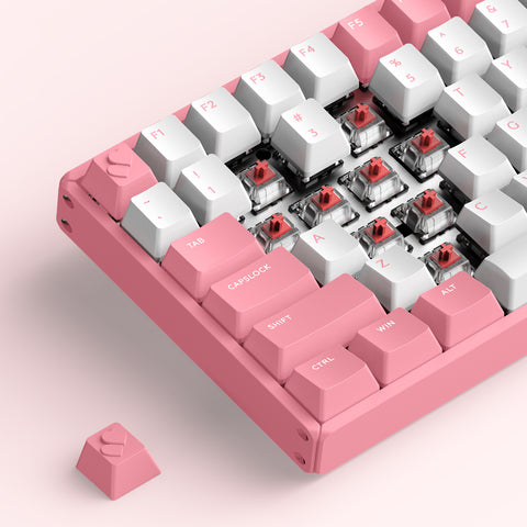 F60&F96 Pink Wireless Mechanical Keyboard