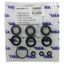 (4646) 2 KITS/PUMP - 33060 VALVE KIT 5CP3120