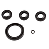 (1400) AR PUMP KIT 2591 OIL SEALS XJV ALUM SHAFT