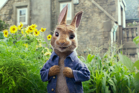 Film Review Peter Rabbit 2018 United Kingdom Neo Film Shop