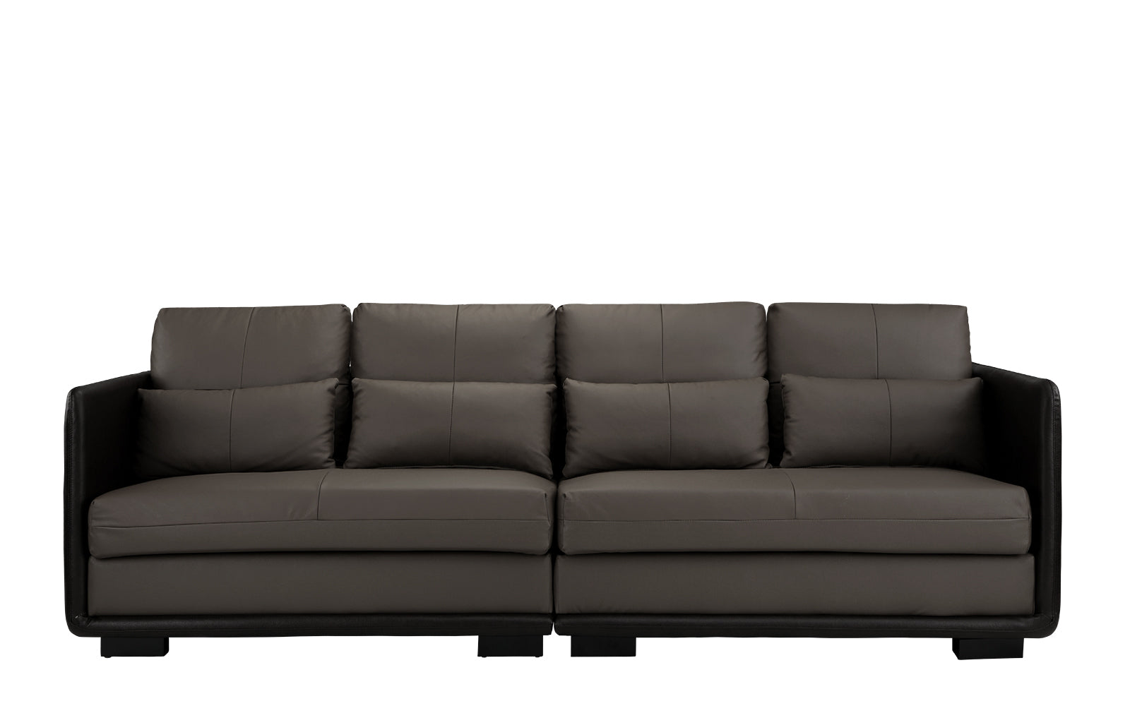 Convertible Leather Sofa Image