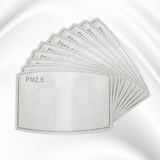 PM 2.5 Filter - 10 Pack