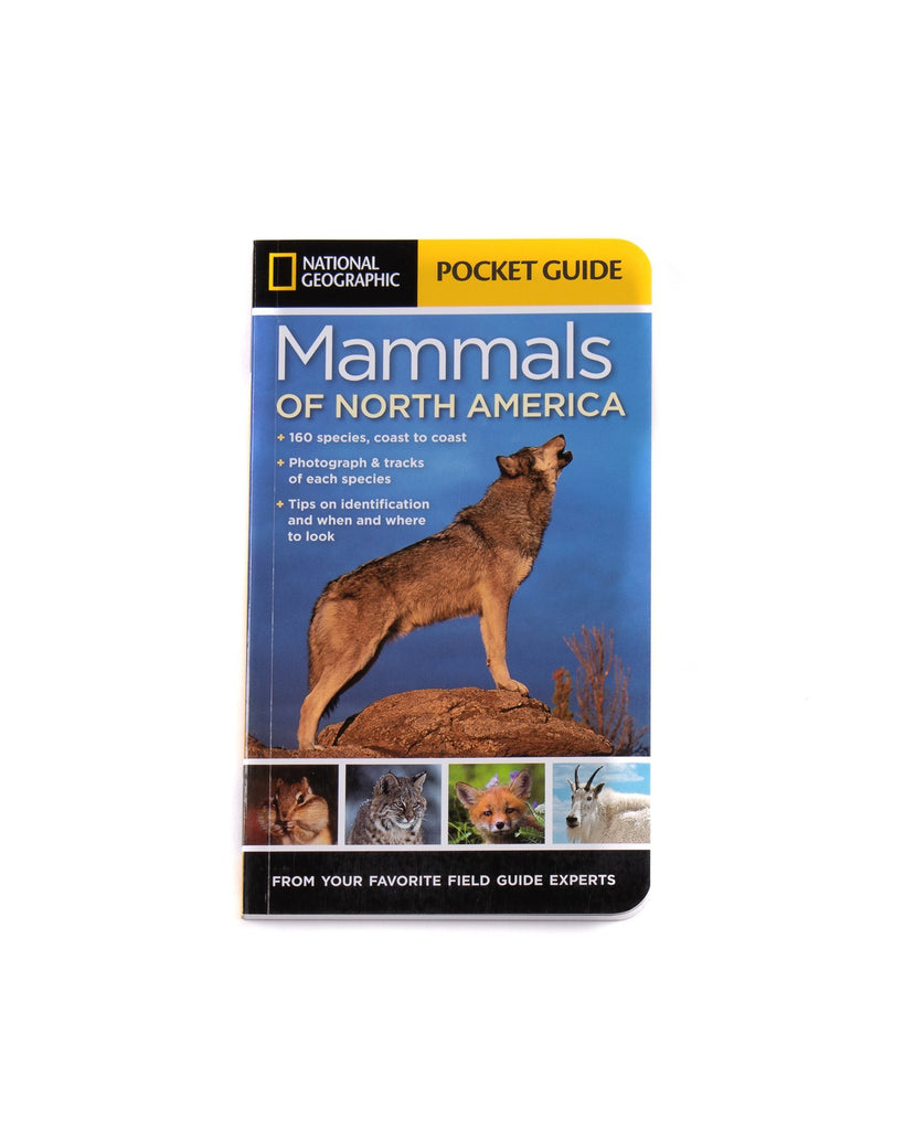 Guide To Mammals - North America