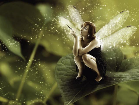 Magical Fairy Kisses Energy Healing System Course.