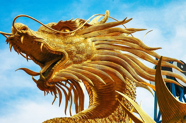 Power of Dragon Empowerment Reiki Attunement