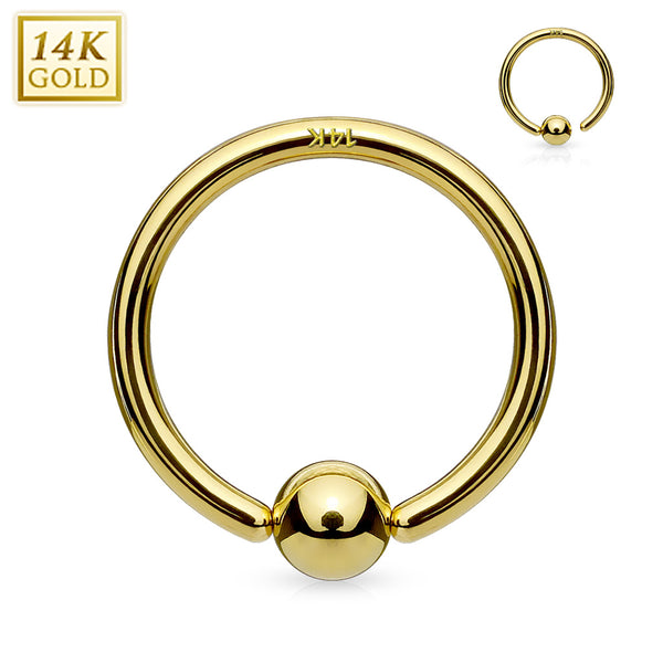 Nose Hoops - 14 Karat Gold