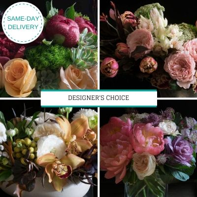 Designer's Choice Collection Cover of 4 unique floral arrangements.
