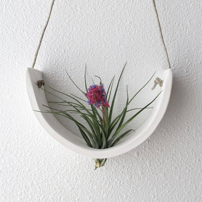 Hanging Ceramic Air Plant Cradle | White Earthenware