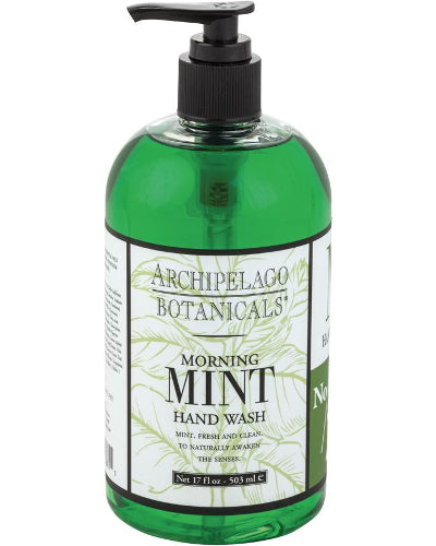 Morning Mint Hand Wash 17 oz
