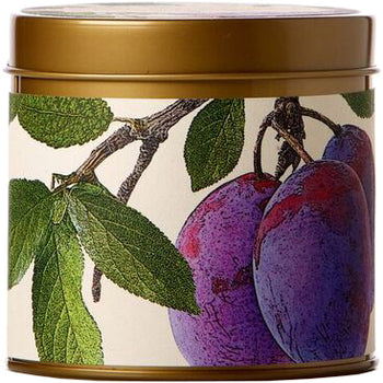 Wild Plum & Cannabis Signature Tin Candle 8 oz