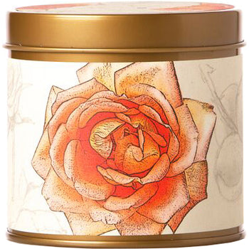 Apricot Rose Signature Tin Candle 8 oz