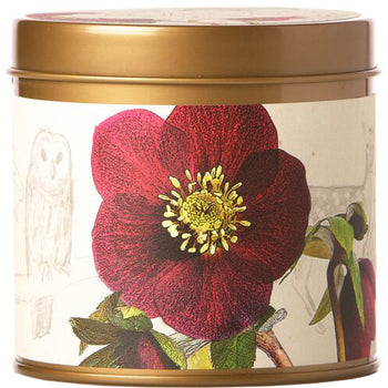Oak Moss & Myrrh Signature Tin Candle 8 oz