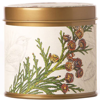 Forest Signature Tin Candle 7oz