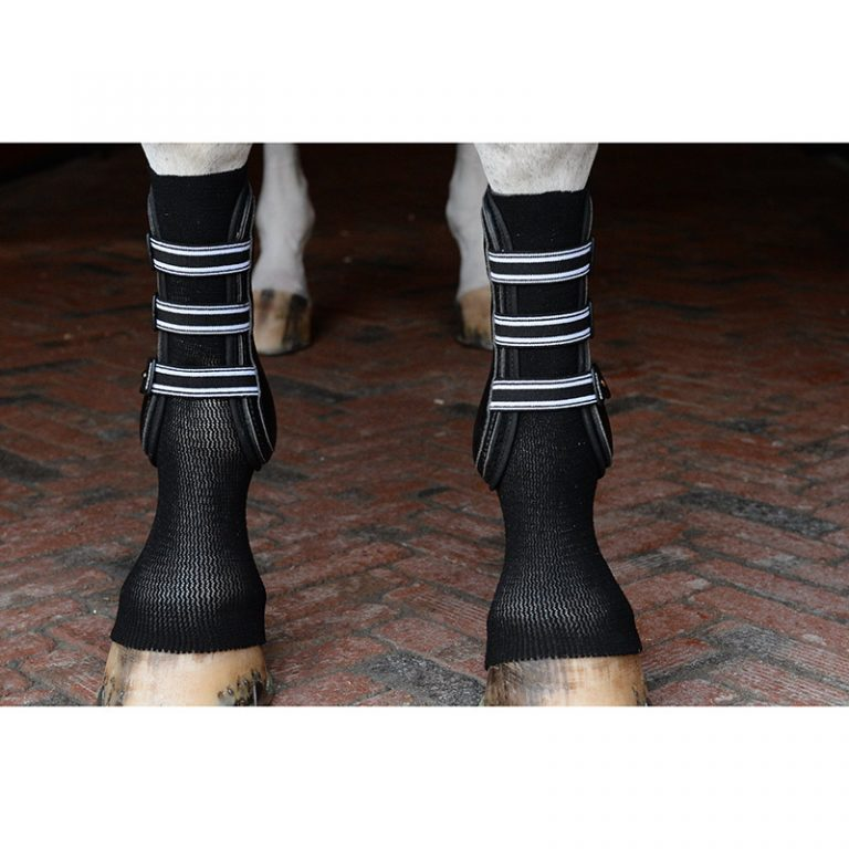 GelSox™ for Horses