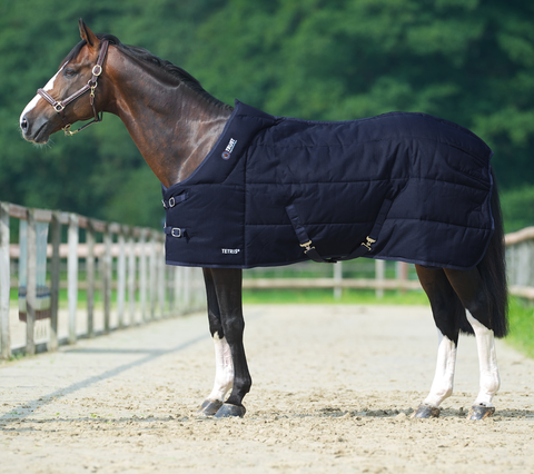 Tetris Stable Rug - Medium - Equus Integral