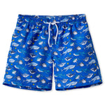 Board Shorts for Boys