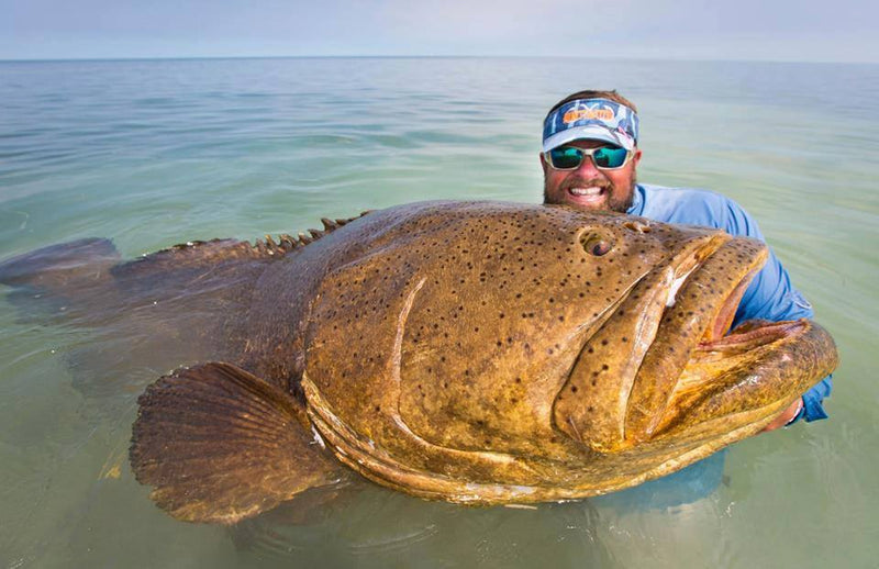 How to Catch Grouper