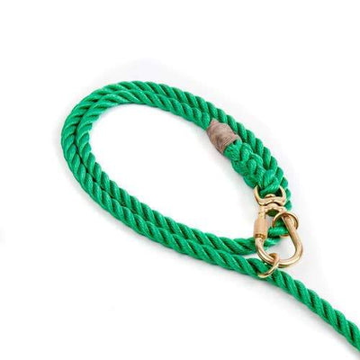 Found My Animal, Found My Animal - Adjustable Miami Green Rope Dog Leash, Small- Placewares