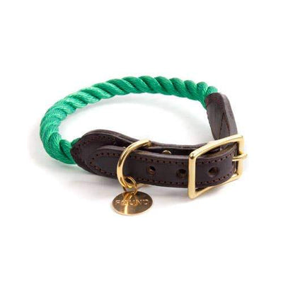Found My Animal, Found My Animal - Miami Green Rope & Leather Cat & Dog Collar, Extra Small- Placewares