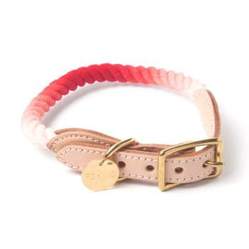 Found My Animal, Marine-Grade Cat & Dog Collar - Coral Fade, - Placewares
