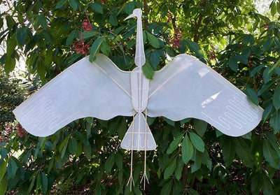 Haptic Lab, Crane Kite, - Placewares