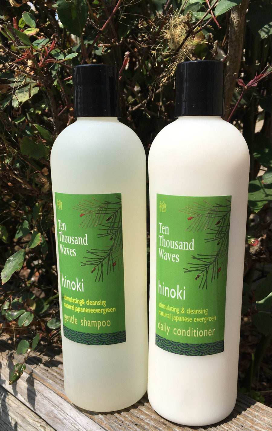 10,000 Waves, Hinoki Conditioner, - Placewares