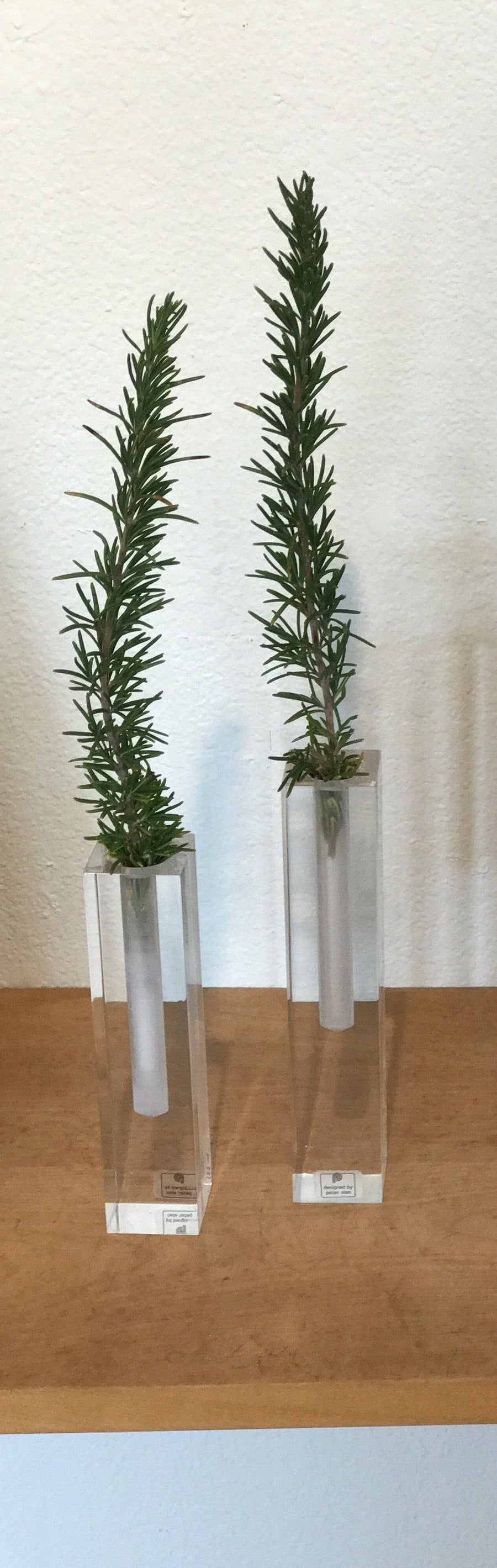 Vintage @ Placewares, Pair of Vintage 1970s Lucite Bud Vases by Peter Alan, - Placewares