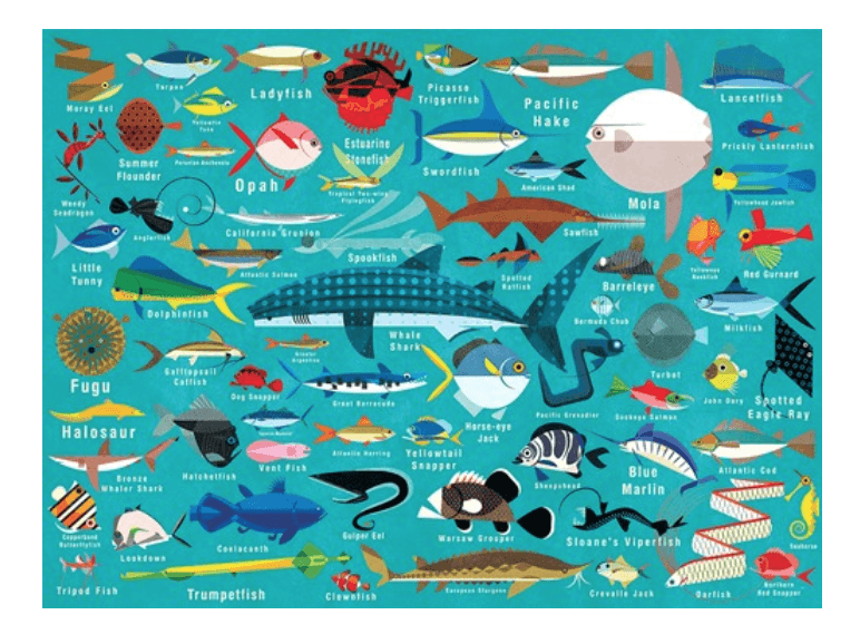 Chronicle Books, Ocean Life 1000 Piece Family Puzzle, - Placewares