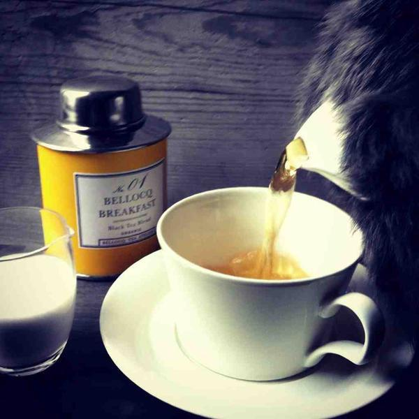 Bellocq, NO. 01, Bellocq Breakfast black tea, - Placewares
