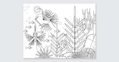 AMMO, Natural Wonders, A Patrick Hruby Coloring Book, - Placewares