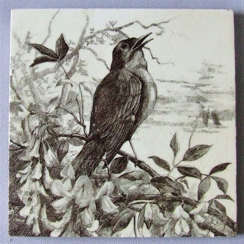 Minton Tile Bird Series Robin in Wisteria