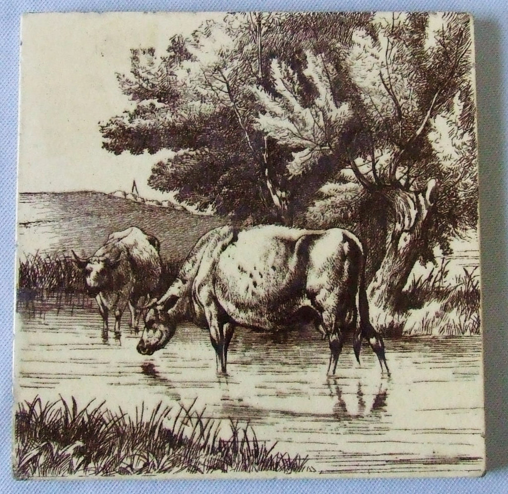 Minton English Transfer tile cows
