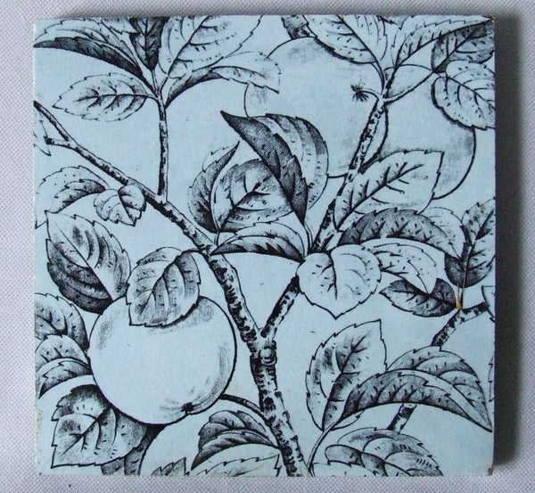 English Transfer tile apples E Smith & Co