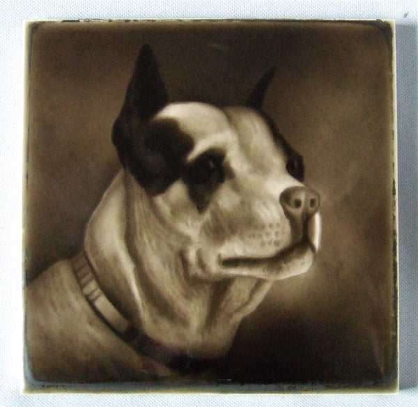Sherwin Cotton Tile Bull Terrier Portrait