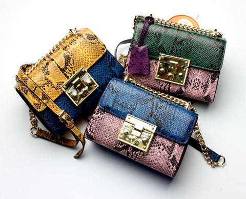 CHAUMONT MINI BAG - sky williams collections