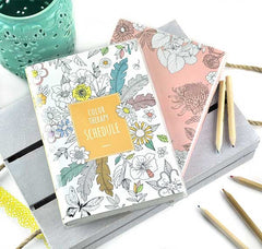 Color Therapy Planner