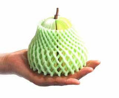 Three Dimensional Apple and Pear Notepads