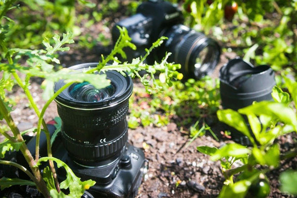 Cotton's Top Five Ways to GROW your Photo Skills