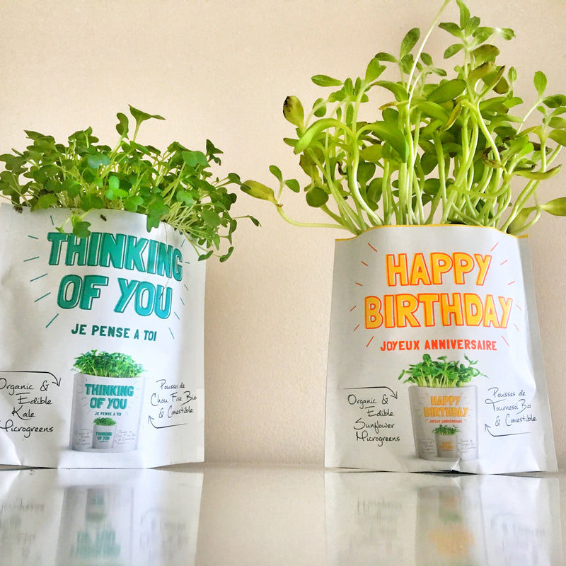 Thinking of You and Happy Birthday Gift-a-Green microgreens