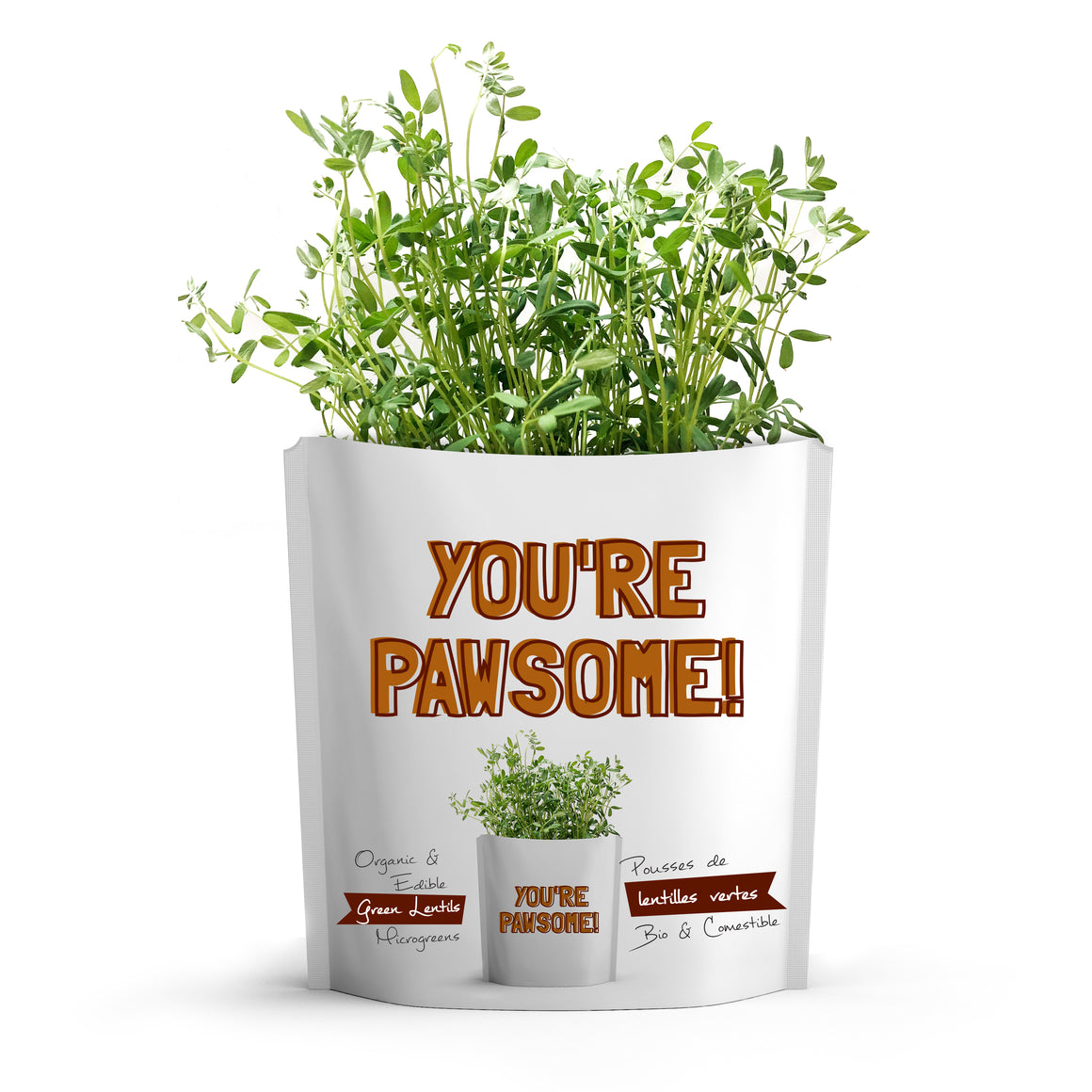 Microgreens Collection | Dogs You're Pawsome | Green Lentils Microgreens - for Dogs - Gift-a-Green