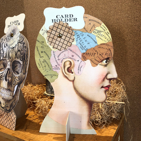 Skull and Phrenology Head Card Holders