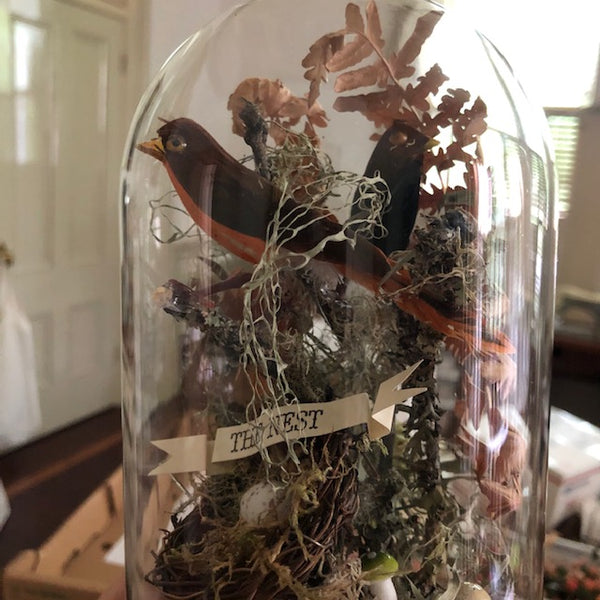 Faux Victorian Taxidermy Dome - Class and Materials 5/24/2020